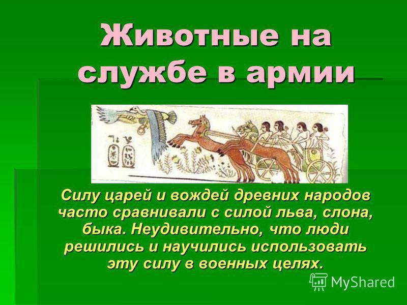 Животные на службе в армии Силу царей и вождей древних народов часто сравнивали с силой льва, слона, быка. Неудивительно, что люди решились и научились использовать эту силу в военных целях.