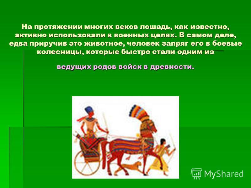На протяжении многих веков лошадь, как известно, активно использовали в военных целях. В самом деле, едва приручив это животное, человек запряг его в боевые колесницы, которые быстро стали одним из ведущих родов войск в древности.