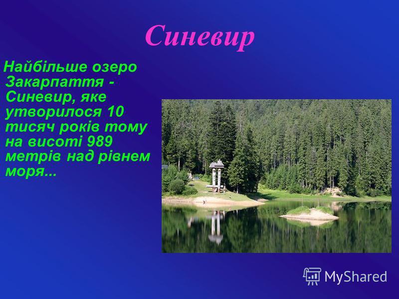 Синевир Найбільше озеро Закарпаття - Синевир, яке утворилося 10 тисяч років тому на висоті 989 метрів над рівнем моря...