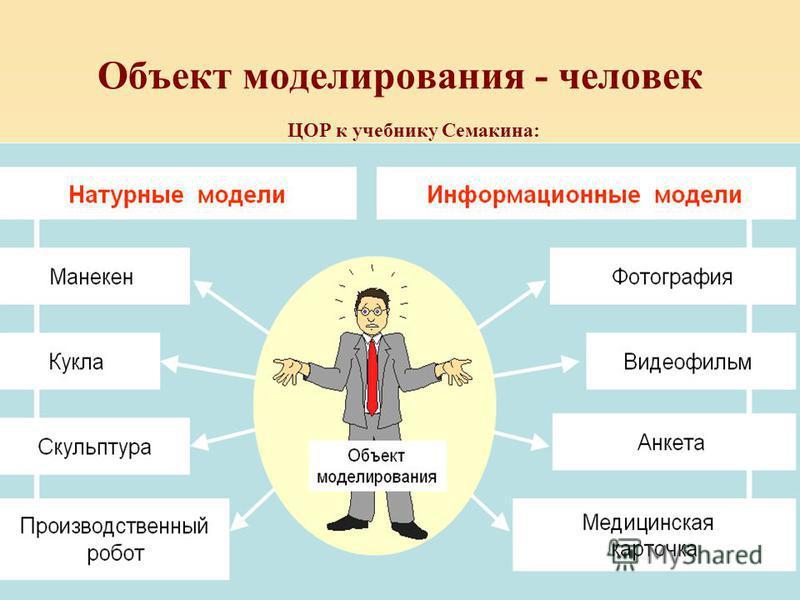Объект моделирования - человек ЦОР к учебнику Семакина: