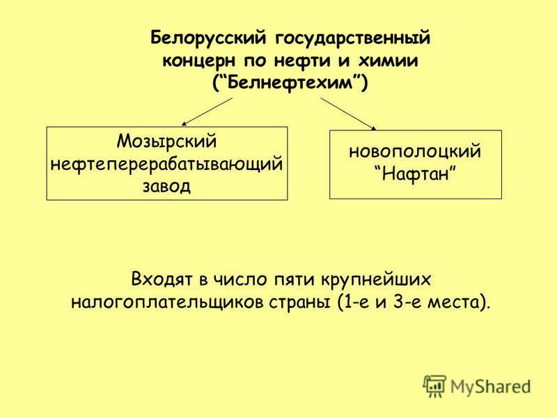 Белорусский государственный концерн по нефти и химии (Белнефтехим) Мозырский нефтеперерабатывающий завод новополоцкий Нафтан Входят в число пяти крупнейших налогоплательщиков страны (1-е и 3-е места).