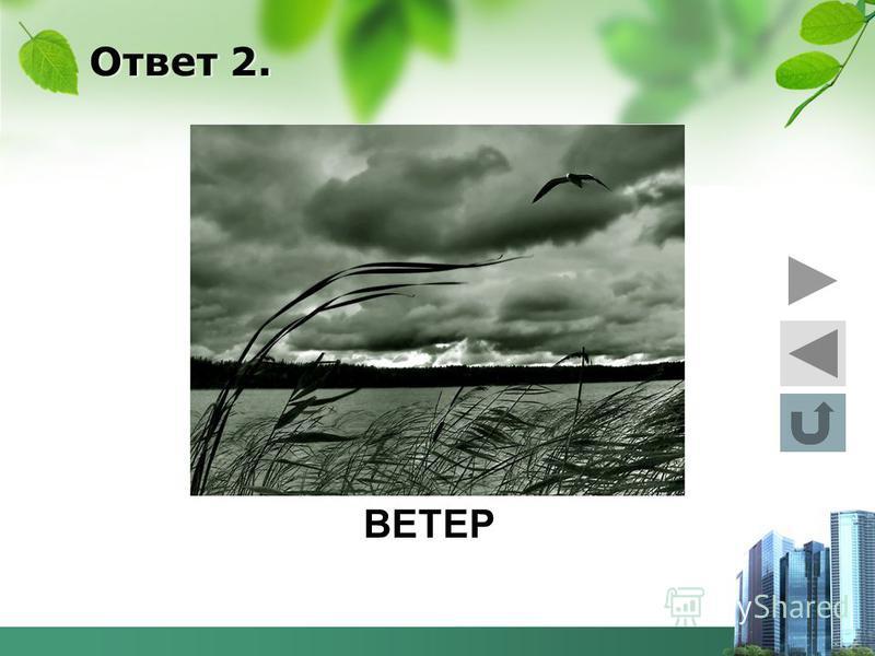 Ответ 2. ВЕТЕР