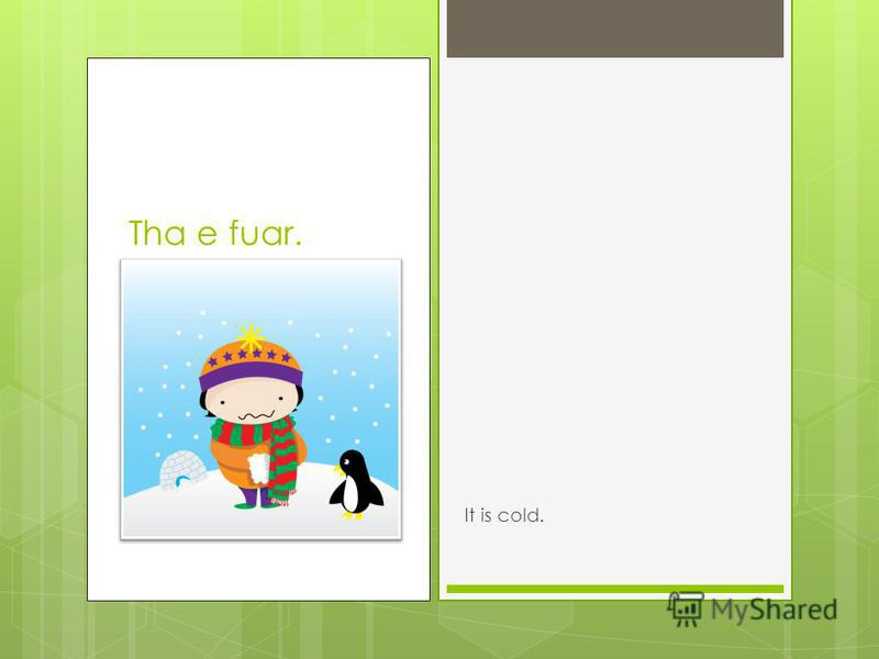 Tha e fuar. It is cold.