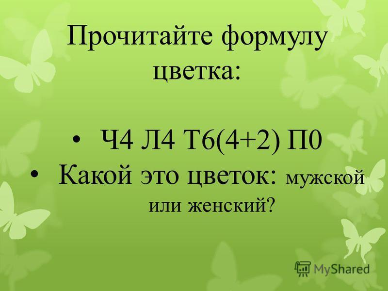Прочитайте формулу цветка: Ч4 Л4 Т6(4+2) П0 Какой это цветок: мужской или женский?