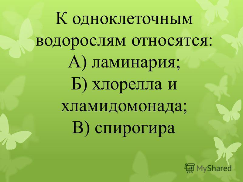 К одноклеточным водорослям относятся: А) ламинария; Б) хлорелла и хламидомонада; В) спирогира.