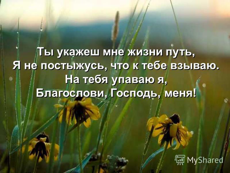 Ты укажеш мне жизни путь, Я не постыжусь, что к тебе взываю. На тебя уповаю я, Благослови, Господь, меня! Ты укажеш мне жизни путь, Я не постыжусь, что к тебе взываю. На тебя уповаю я, Благослови, Господь, меня!
