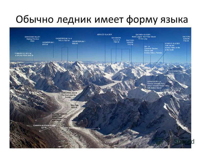 Обычно ледник имеет форму языка