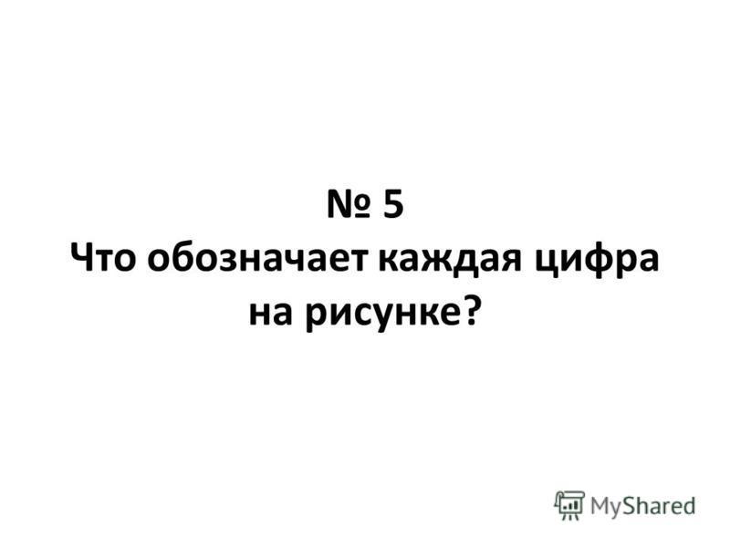 5 Что обозначает каждая цифра на рисунке?