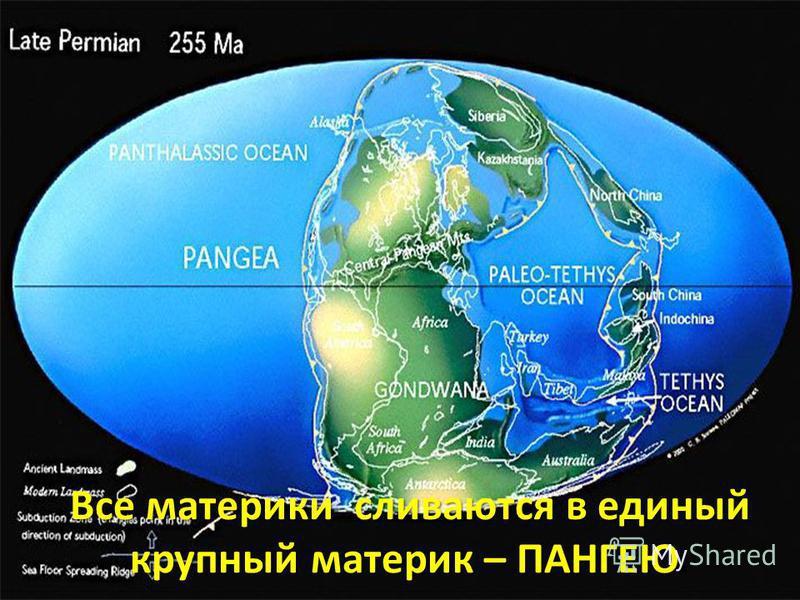 Все материки сливаются в единый крупный материк – ПАНГЕЮ Все материки сливаются в единый крупный материк – ПАНГЕЮ.