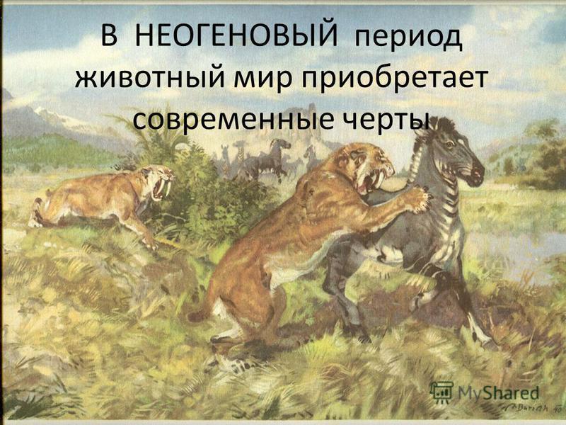 В НЕОГЕНОВЫЙ период животный мир приобретает современные черты