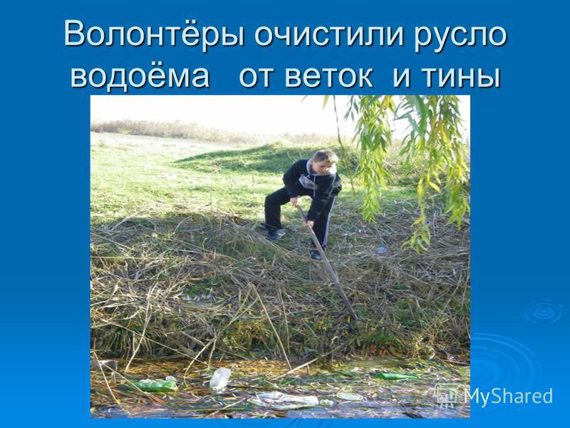 Волонтёры очистили русло водоёма от веток и тины
