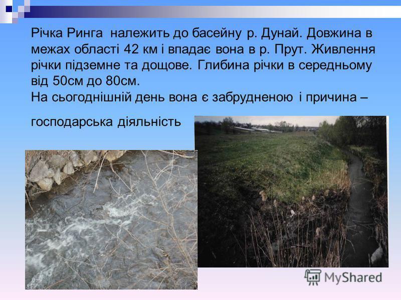 Річка Ринга належить до басейну р. Дунай. Довжина в межах області 42 км і впадає вона в р. Прут. Живлення річки підземне та дощове. Глибина річки в середньому від 50см до 80см. На сьогоднішній день вона є забрудненою і причина – господарська діяльніс