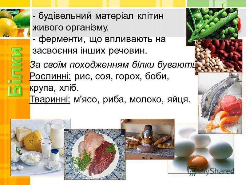 - будівельний матеріал клітин живого організму. - ферменти, що впливають на засвоєння інших речовин. За своїм походженням білки бувають: Рослинні: рис, соя, горох, боби, крупа, хліб. Тваринні: м'ясо, риба, молоко, яйця.