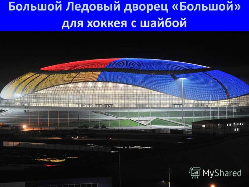 Большой Ледовый дворец «Большой» для хоккея с шайбой