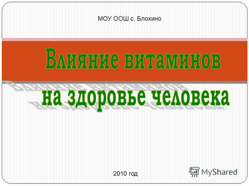 МОУ ООШ с. Блохино 2010 год
