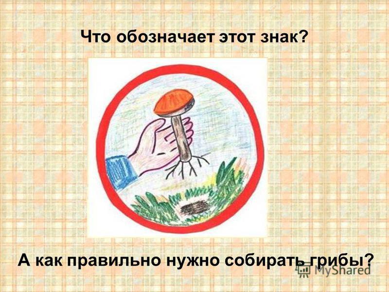 Что обозначает этот знак? А как правильно нужно собирать грибы?
