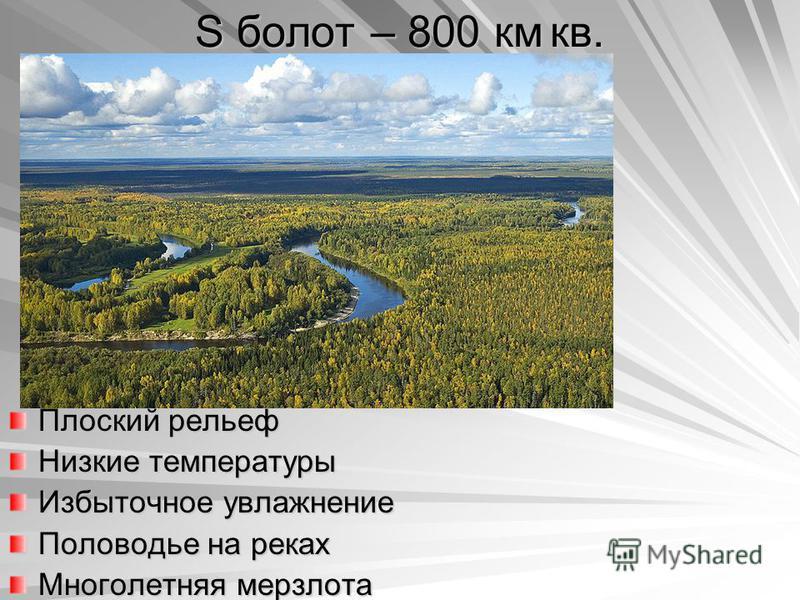 S болот – 800 км кв. Плоский рельеф Низкие температуры Избыточное увлажнение Половодье на реках Многолетняя мерзлота