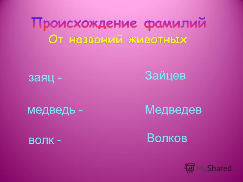 заяц - медведь - волк - Зайцев Медведев Волков