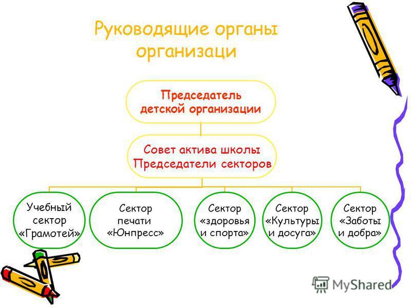 Руководящие органы организации Председатель детской организациии