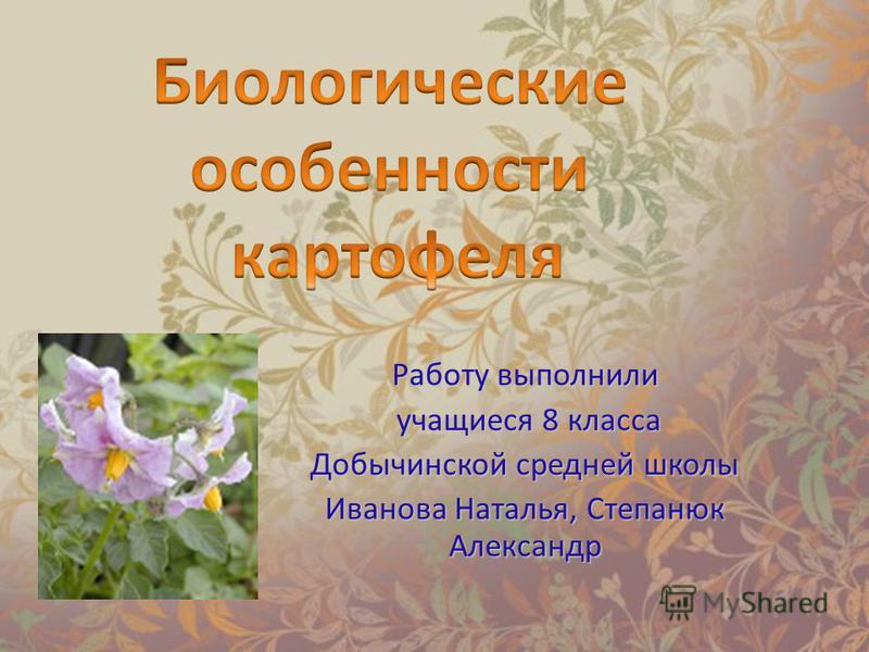 Работу выполнили учащиеся 8 класса учащиеся 8 класса Добычинской средней школы Иванова Наталья, Степанюк Александр