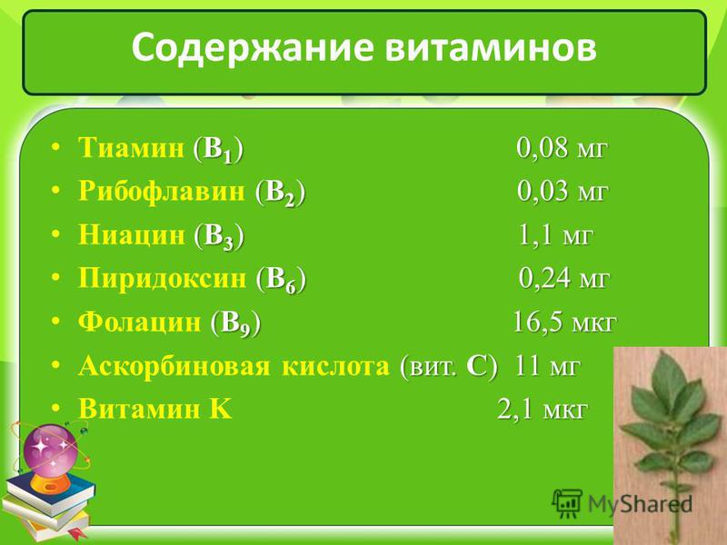 Содержание витаминов (B 1 ) 0,08 мг Тиамин (B 1 ) 0,08 мг (B 2 ) 0,03 мг Рибофлавин (B 2 ) 0,03 мг (B 3 ) 1,1 мг Ниацин (B 3 ) 1,1 мг (B 6 ) 0,24 мг Пиридоксин (B 6 ) 0,24 мг (B 9 ) 16,5 мкг Фолацин (B 9 ) 16,5 мкг (вит. С) 11 мг Аскорбиновая кислота