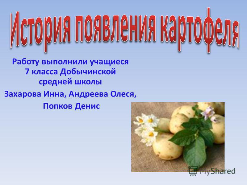 Работу выполнили учащиеся 7 класса Добычинской средней школы Захарова Инна, Андреева Олеся, Попков Денис