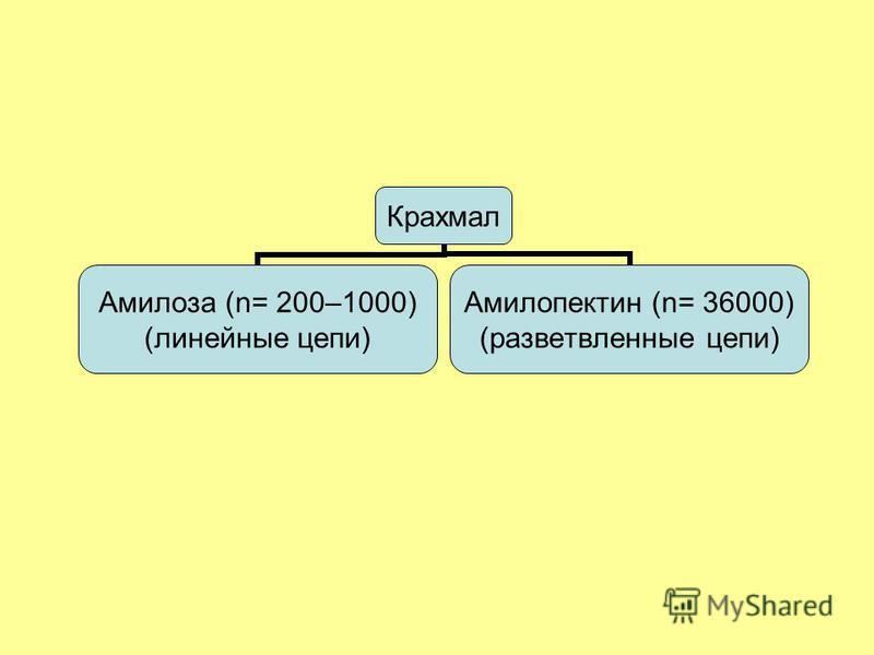 Крахмал Амилоза (n= 200– 1000) (линейные цепи) Амилопектин (n= 36000) (разветвленные цепи)