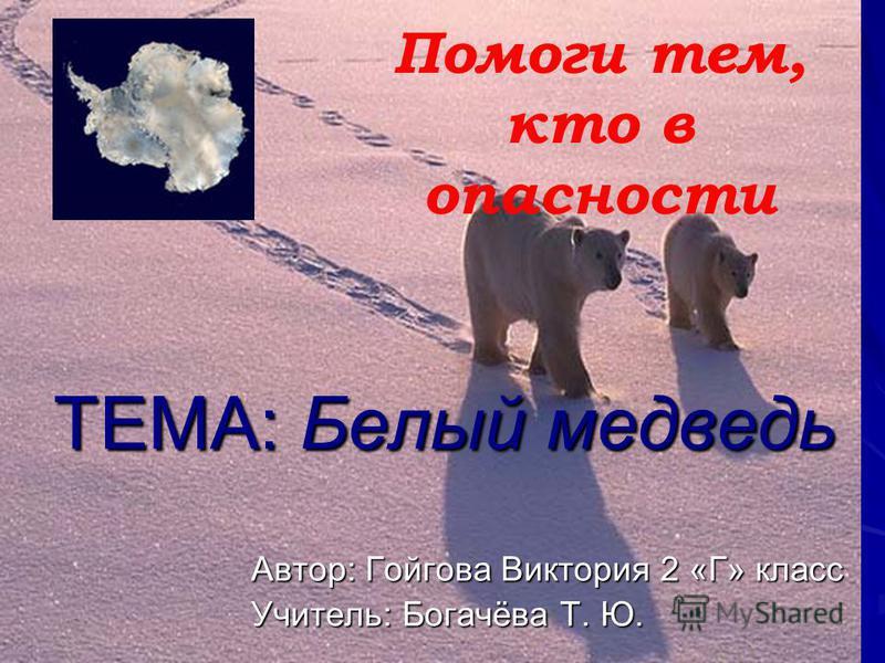 ТЕМА: Белый медведь ТЕМА: Белый медведь Автор: Гойгова Виктория 2 «Г» класс Учитель: Богачёва Т. Ю. Помоги тем, кто в опасности