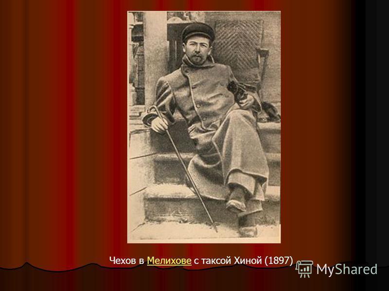 Чехов в Мелихове с таксой Хиной (1897)Мелихове