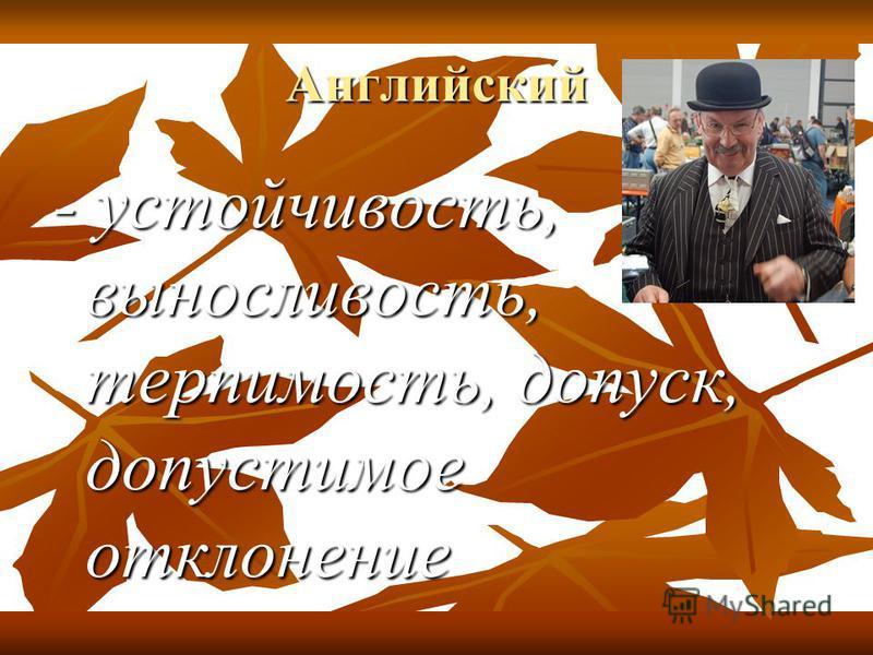 Английский - устойчивость, выносливость, терпимость, допуск, допустимое отклонение