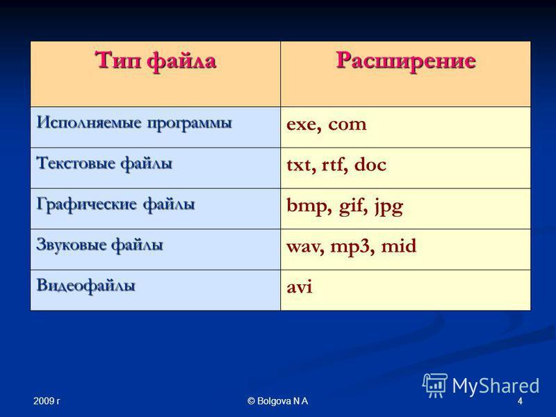2009 г 4© Bolgova N A Тип файла Расширение Исполняемые программы exe, com Текстовые файлы txt, rtf, doc Графические файлы bmp, gif, jpg Звуковые файлы wav, mp3, mid Видеофайлы avi