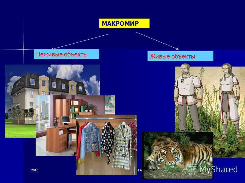 2010© Болгова Н.А.8 МАКРОМИР Неживые объекты Живые объекты