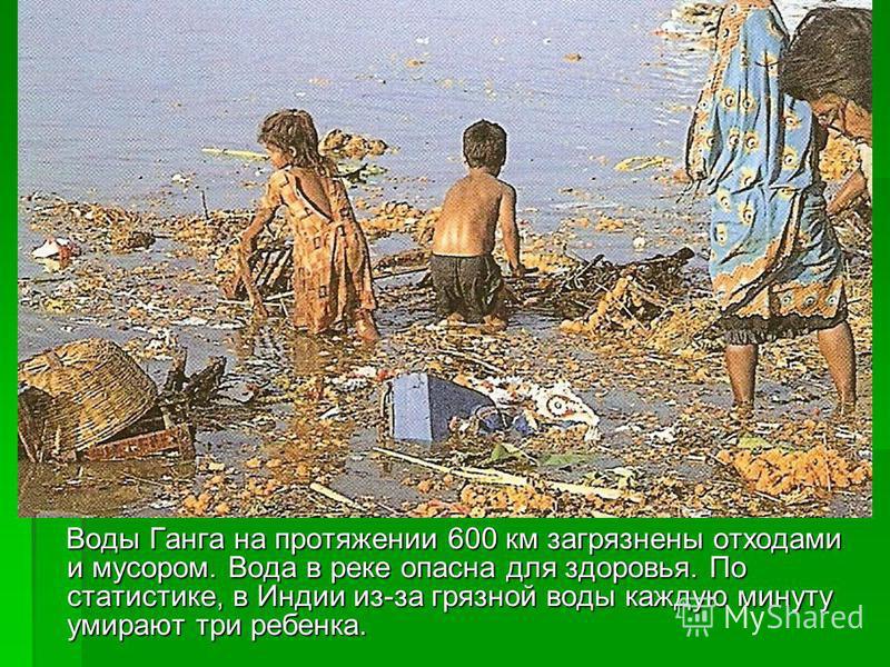 Воды Ганга на протяжении 600 км загрязнены отходами и мусором. Вода в реке опасна для здоровья. По статистике, в Индии из-за грязной воды каждую минуту умирают три ребенка. Воды Ганга на протяжении 600 км загрязнены отходами и мусором. Вода в реке оп