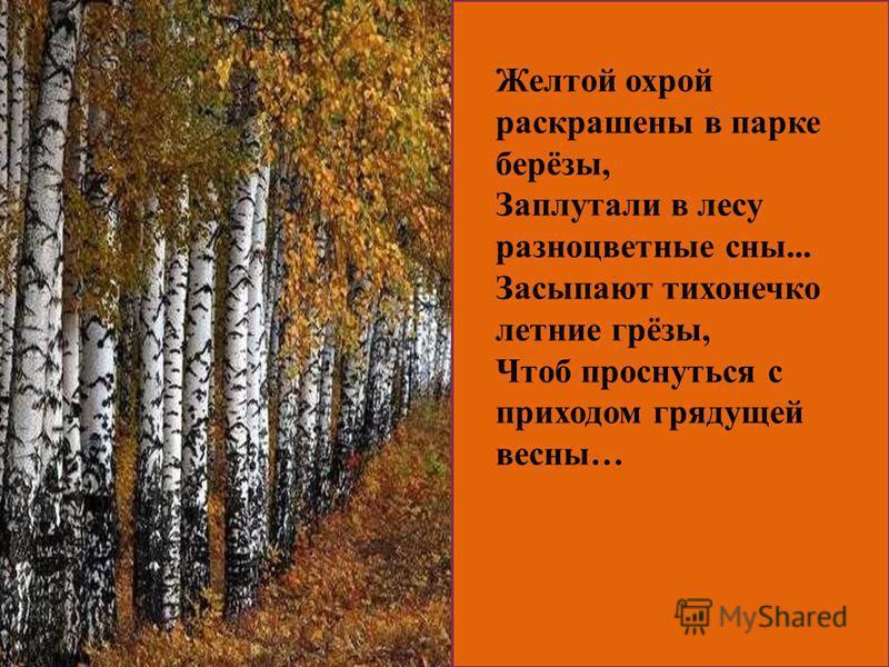 Желтой охрой раскрашены в парке берёзы, Заплутали в лесу разноцветные сны... Засыпают тихонечко летние грёзы, Чтоб проснуться с приходом грядущей весны…