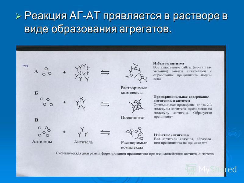 Реакция АГ-АТ проявляется в растворе в виде образования агрегатов. Реакция АГ-АТ проявляется в растворе в виде образования агрегатов.