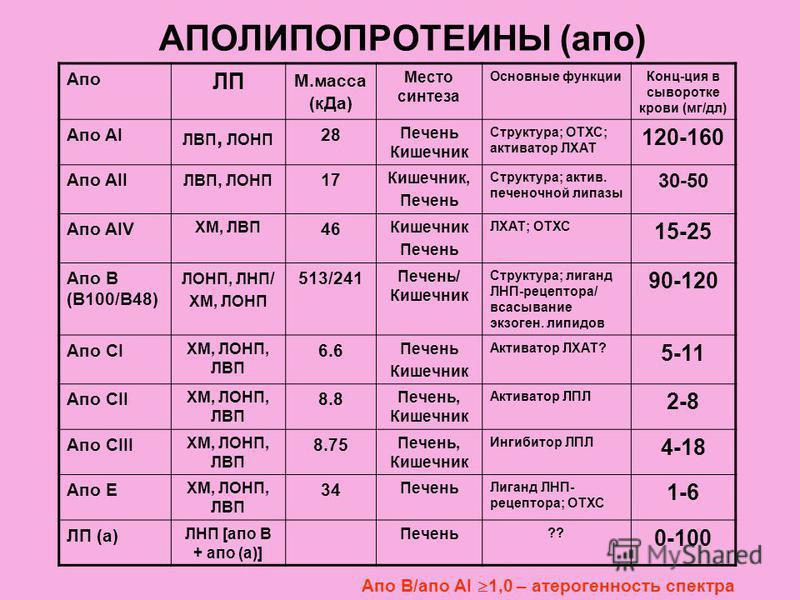 АПОЛИПОПРОТЕИНЫ (опо) Апо ЛП М.масса (к Да) Место синтеза Основные функции Конц-ция в сыворотке крови (мг/дл) Апо AI ЛВП, ЛОНП 28 Печень Кишечник Структура; ОТХС; активатор ЛХАТ 120-160 Апо AII ЛВП, ЛОНП 17 Кишечник, Печень Структура; актив. печеночн