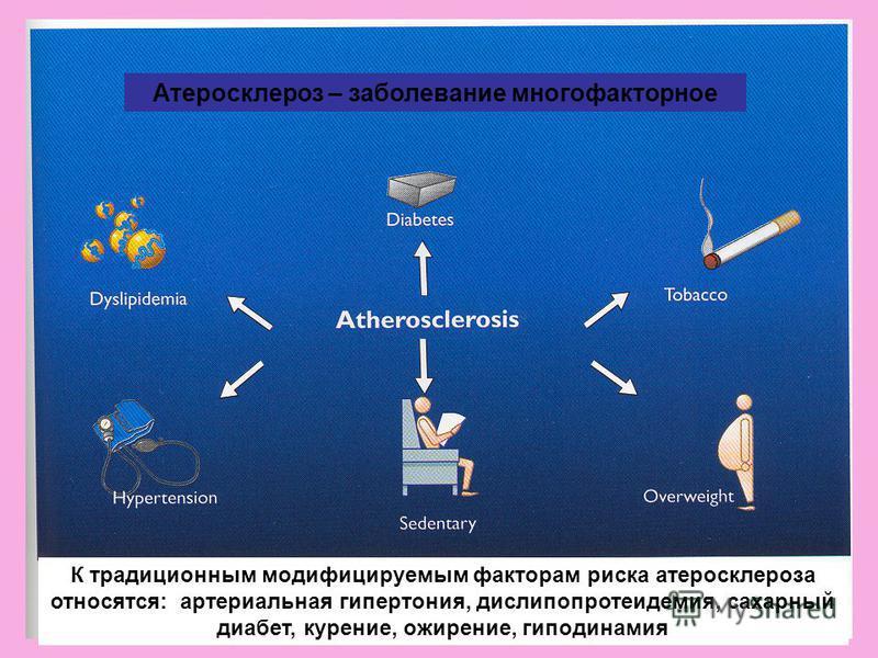 К традиционным модифицируемым факторам риска атеросклероза относятся: артериальная гипертония, дислипопротеидемия, сахарный диабет, курение, ожирение, гиподинамия Атеросклероз – заболевание многофакторное