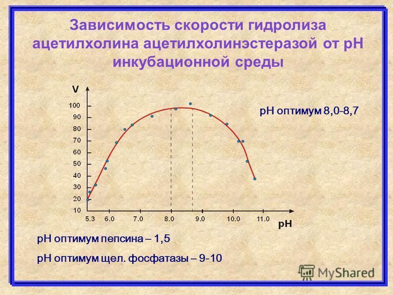 Зависимость скорости гидролиза ацетилхолина ацетилхолинэстеразой от рН инкубационной среды рН оптимум 8,0-8,7 рН оптимум пепсина – 1,5 рН оптимум щел. фосфатазы – 9-10