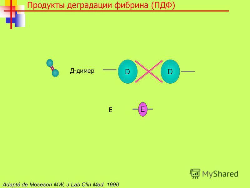 DD E Д-димер Е Adapté de Moseson MW, J Lab Clin Med, 1990 Продукты деградации фибрина (ПДФ)