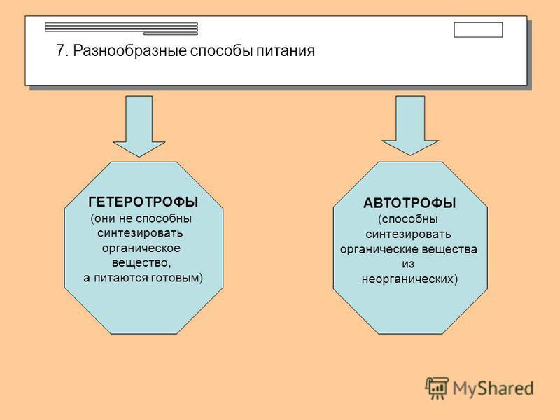 7. Разнообразные способы питания ГЕТЕРОТРОФЫ (они не способны синтезировать органическое вещество, а питаются готовым) АВТОТРОФЫ (способны синтезировать органические вещества из неорганических)
