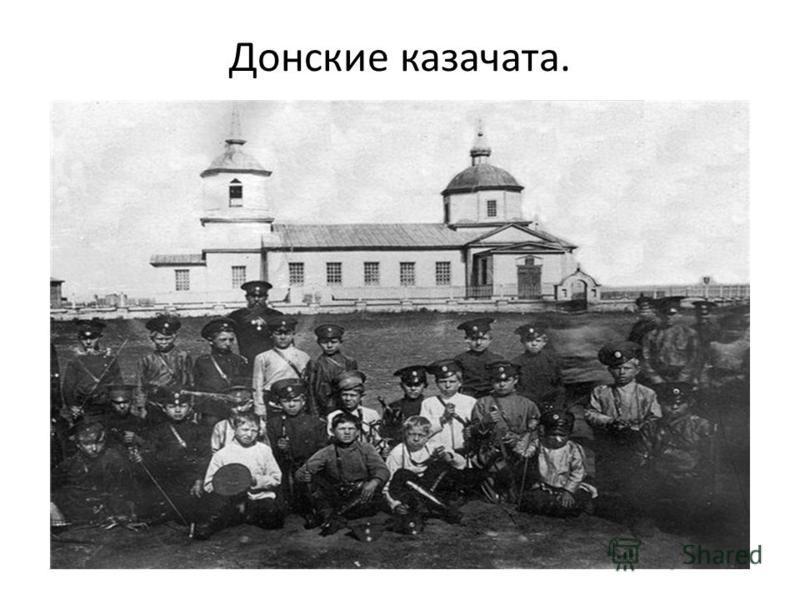 Донские казачата.