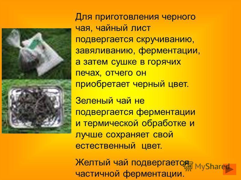Для приготовления черного чая, чайный лист подвергается скручиванию, завяливанию, ферментации, а затем сушке в горячих печах, отчего он приобретает черный цвет. Зеленый чай не подвергается ферментации и термической обработке и лучше сохраняет свой ес
