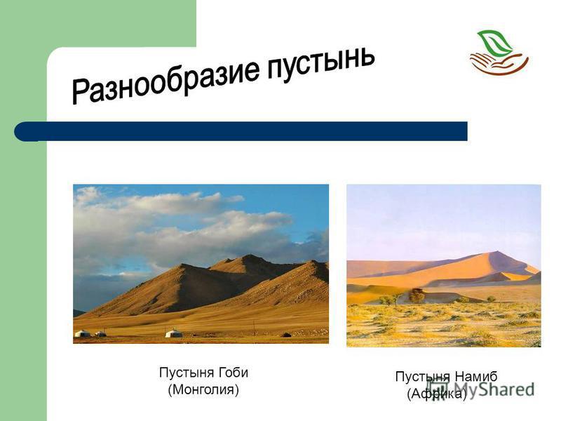 Пустыня Гоби (Монголия) Пустыня Намиб (Африка)