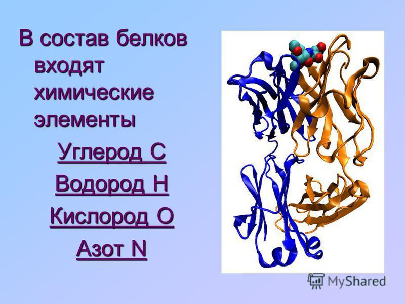 Химическая связь между остатками аминокислот в белках называется амидной * Химическая связь между остатками аминокислот в белках называется амидной ( пептидной)