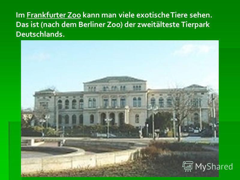 Im Frankfurter Zoo kann man viele exotische Tiere sehen. Das ist (nach dem Berliner Zoo) der zweitälteste Tierpark Deutschlands.