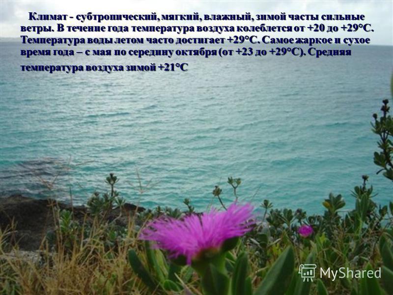 Климат - субтропический, мягкий, влажный, зимой часты сильные ветры. В течение года температура воздуха колеблется от +20 до +29°С. Температура воды летом часто достигает +29°С. Самое жаркое и сухое время года – с мая по середину октября (от +23 до +