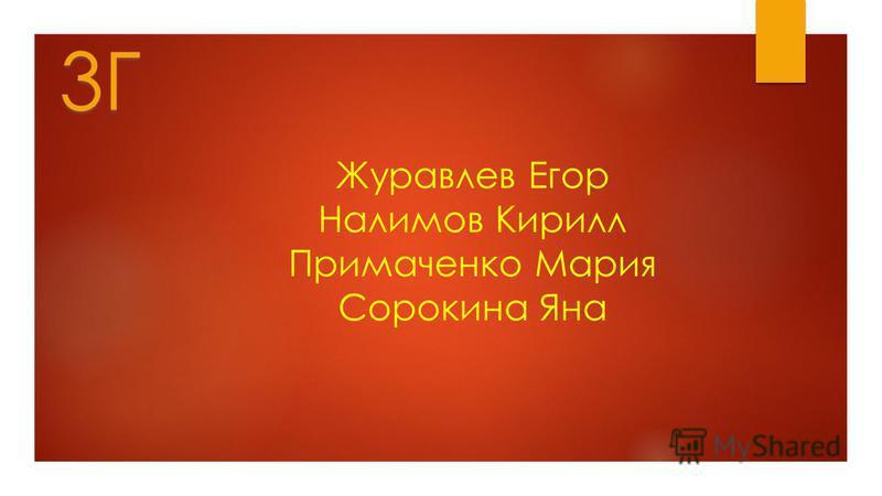 Журавлев Егор Налимов Кирилл Примаченко Мария Сорокина Яна 3Г