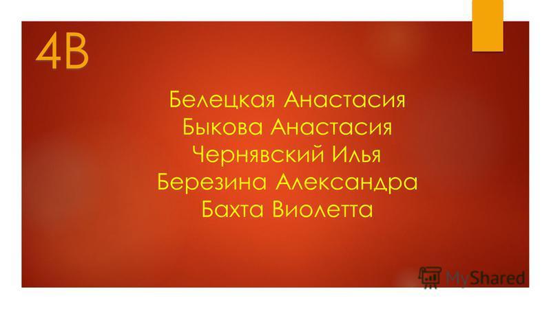 Белецкая Анастасия Быкова Анастасия Чернявский Илья Березина Александра Бахта Виолетта 4В