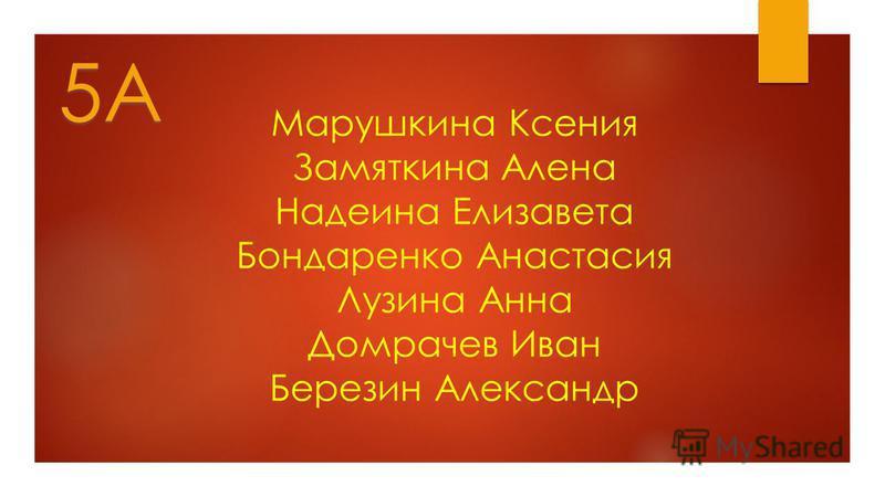Марушкина Ксения Замяткина Алена Надеина Елизавета Бондаренко Анастасия Лузина Анна Домрачев Иван Березин Александр 5А