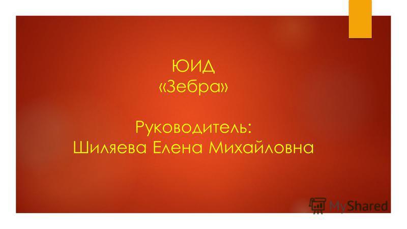 ЮИД «Зебра» Руководитель: Шиляева Елена Михайловна
